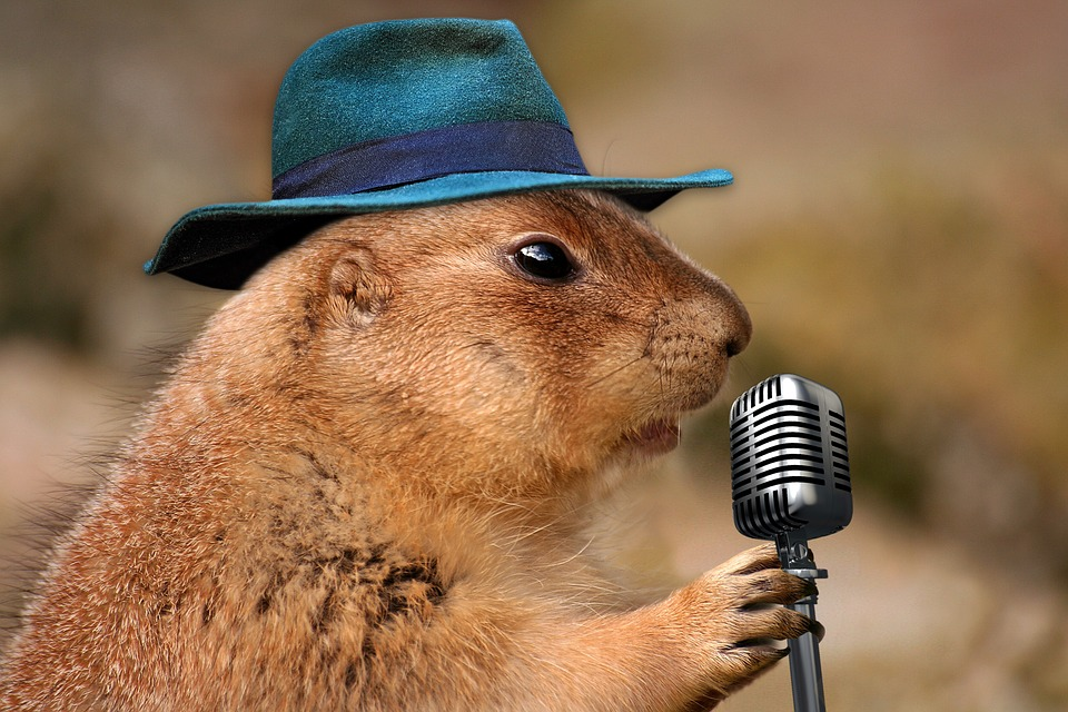 Get Out of Groundhog Day: 4 Easy Changes to Re-Energise Your Business